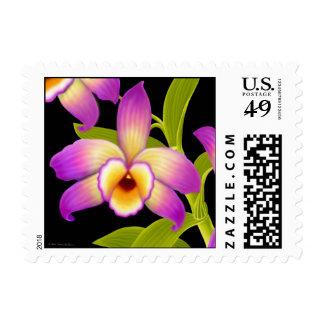 Franqueo de la orquídea de Nobile del Dendrobium