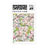 Franqueo de las flores de cerezo timbres postales