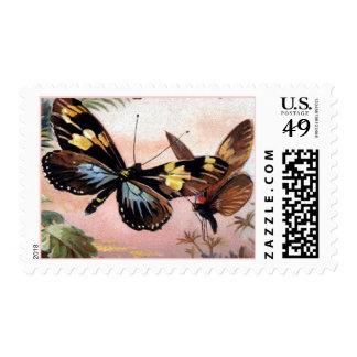 Franqueo de las mariposas del Victorian del Timbres Postales
