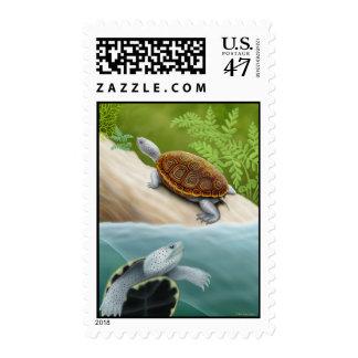 Franqueo de las tortugas de la tortuga acuática de estampilla