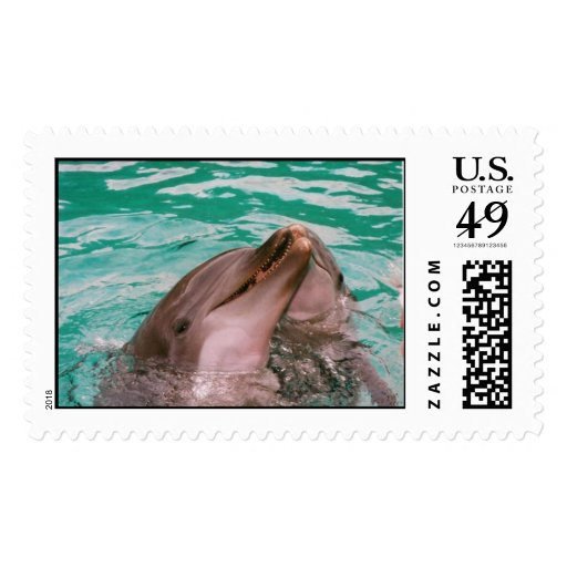 Franqueo de los delfínes