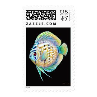 Franqueo de los pescados de Cichlid del disco Timbre Postal