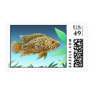 Franqueo de los pescados del acuario del Cichlid Sello