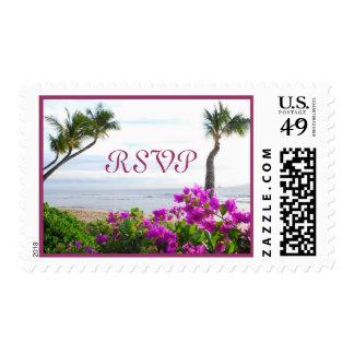 Franqueo de RSVP de la playa de Maui