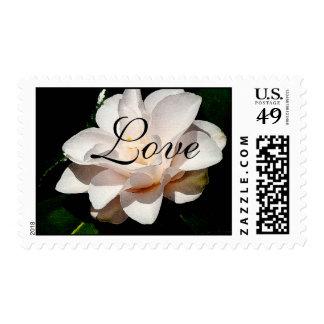 Franqueo del amor de Camillia Sello Postal