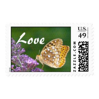 Franqueo del amor de la flor de mariposa