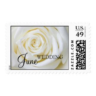 Franqueo del boda de junio estampilla