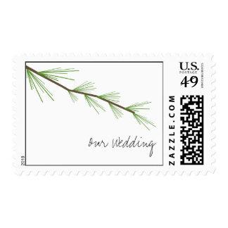 Franqueo del boda de la rama del pino estampilla