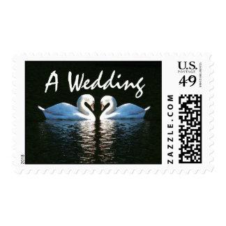 Franqueo del boda del amor de los cisnes