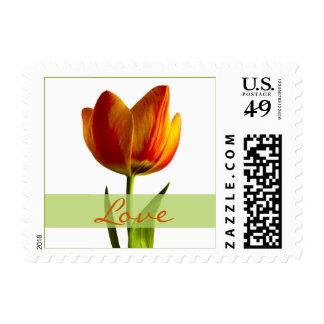 Franqueo del boda del amor del tulipán