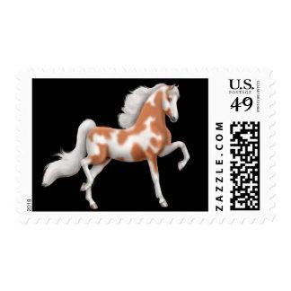 Franqueo del caballo de Saddlebred del americano