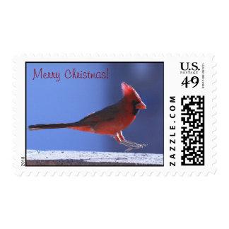 Franqueo del cardenal del navidad estampilla
