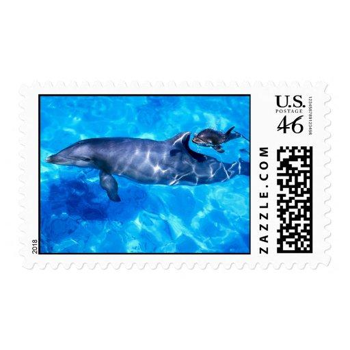 Franqueo del delfín
