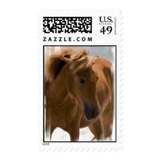 Franqueo del diseño del caballo de la castaña