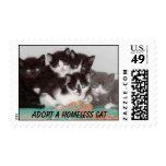 Franqueo del gatito timbre postal