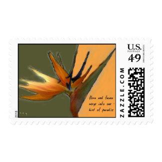 Franqueo del Haiku de la ave del paraíso Estampilla
