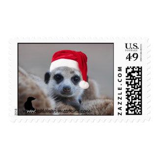 Franqueo del meerkat de Santa Sello