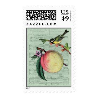 Franqueo del melocotón y del pájaro del vintage sello postal