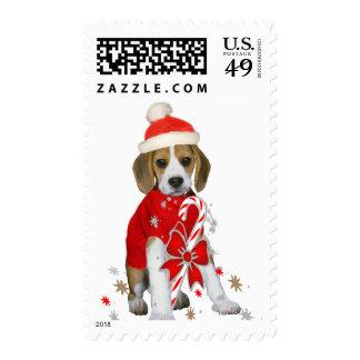 Franqueo del navidad del perrito del beagle