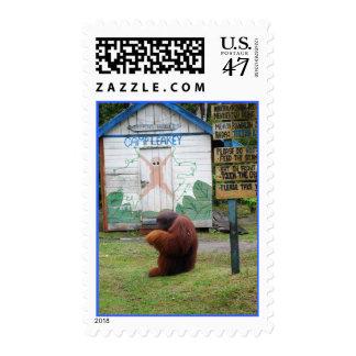 Franqueo del orangután de Leakey del campo Estampilla