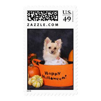 Franqueo del perro de Halloween
