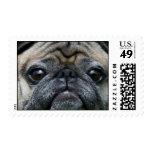 Franqueo del perro del barro amasado sellos postales