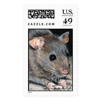 Franqueo del ratón de casa
