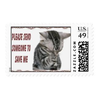 Franqueo del rescate del gatito