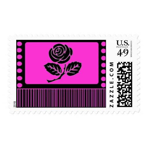 Franqueo del rosa color de rosa