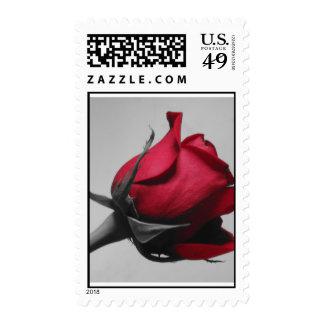 Franqueo del rosa rojo sellos