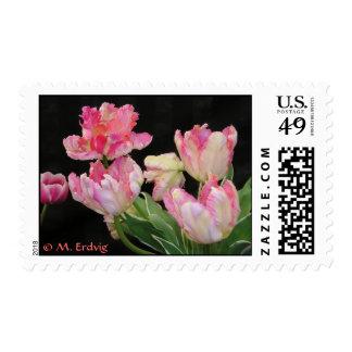 Franqueo del tulipán de Think Pink Sello Postal