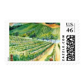 Franqueo del viñedo de California