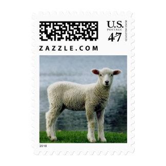 Franqueo derecho 548 del cordero timbre postal