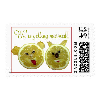 Franqueo divertido del boda timbre postal