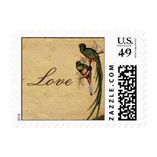 Franqueo elegante del amor del pájaro de quetzal d