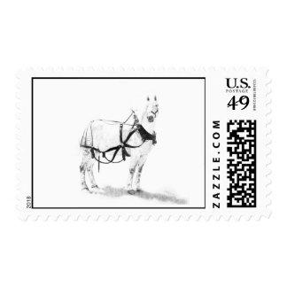 Franqueo equino del arte del caballo de proyecto d