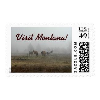 """Franqueo escarchado Montana de la visita"""" de la ni"""