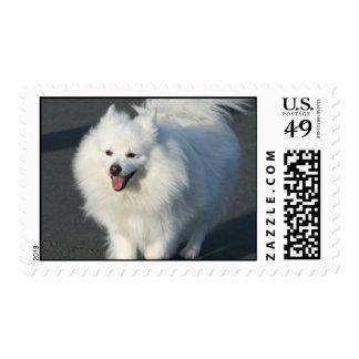 Franqueo esquimal americano sello postal