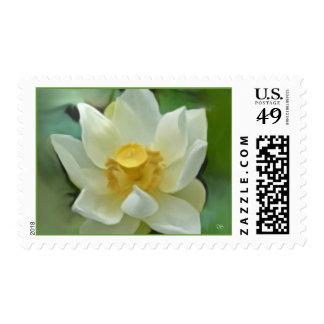Franqueo floral blanco sellos postales