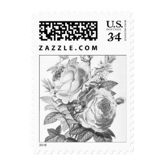 Franqueo floral del vintage elegante lamentable sello