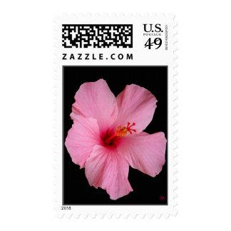 Franqueo floral rosado estampilla