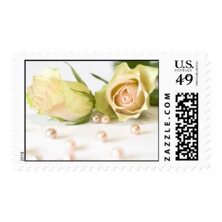 Franqueo hermoso de los rosas sello postal
