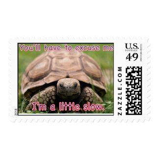 Franqueo lento de la tortuga