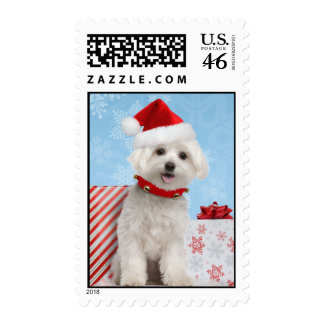 Franqueo maltés del navidad del perrito