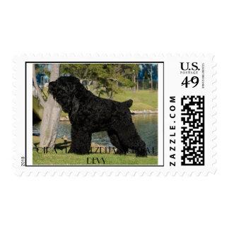 Franqueo negro de Terrier los E.E.U.U. del ruso