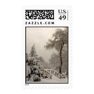 Franqueo nevado de los árboles del sello del país