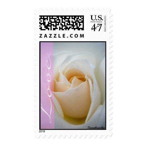 Franqueo poner crema del rosa blanco del amor estampillas