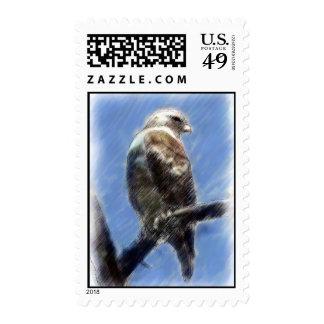 Franqueo Rojo-Atado del halcón