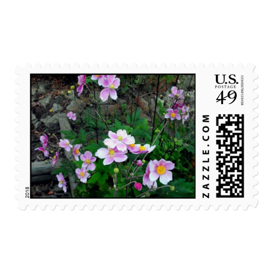 Franqueo rosado de la flor sello postal