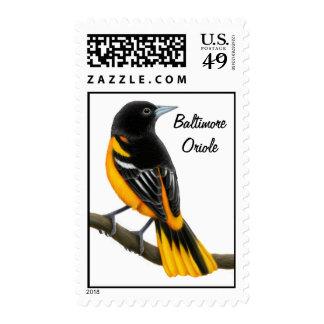 Franqueo salvaje del pájaro de Baltimore Oriole